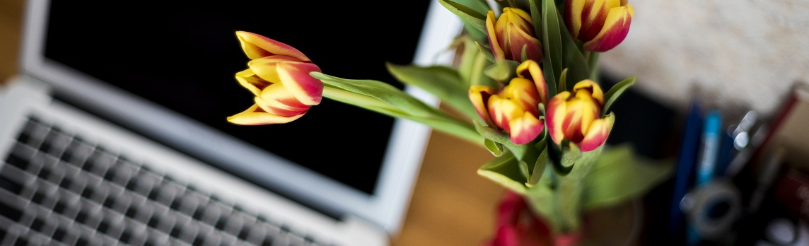 Unsplash photo-computer with tulips cropped